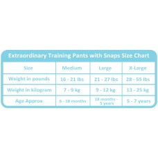Charlie Banana - 2-in-1 Swim Diapers & Training Pants w Snaps (Diva Bellerina)