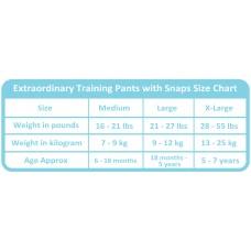 Charlie Banana - 2-in-1 Swim Diapers & Training Pants w Snaps (Malibu)